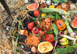 Treat Your Gut Like a Compost Pile!