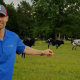 Grass Fed Beef- The Best Fatigue Fighting Food