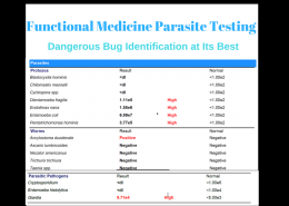 Functional Medicine Parasite Testing - Dangerous Bug Identification at Its Best