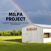 MILPA Project- Growing THICK Food Plots with BIG Advantages